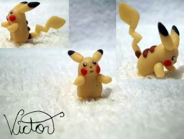 25 Pikachu by VictorCustomizer