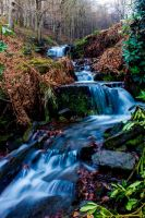 Stream at Lady Bower by JSWoodhams