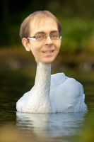 sean the swan by MrSparkles10