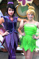 Tinkerbell and Vidia by DisneyLizzi