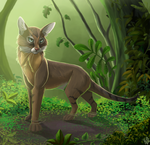 Jungle cat by Nothofagus-obliqua
