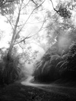 Road to Ciwidey by titis-pratiwi