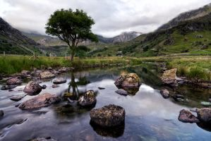Ffrancon-Valley 23062014 by CharmingPhotography