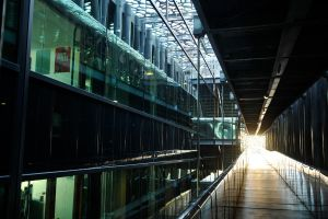 Museum 3 - Marseille by wildplaces