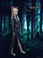 Thranduil cosplay 04 (bjd doll)/ Thranduil doll by leoniely