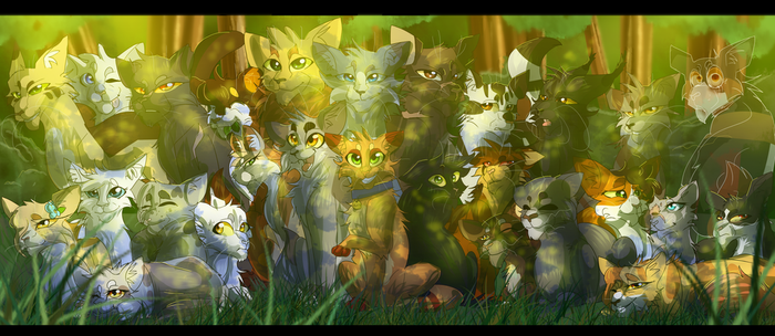 Into the Wild (Warrior Cats) by WarriorCat3042