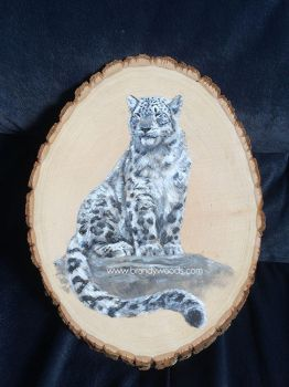 Snow Leopard - 'Renewed Perception' by BrandyWoods