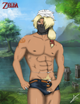Sexy Sheik - The Legend of Zelda by AndsportsART