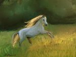 White Horse Study by bolsterstone