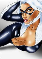 Blackcat by J-indmand