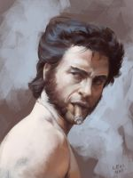 The Wolverine by perplexilexi