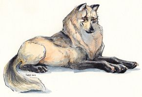Regal Wolf Lady by FablePaint