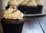 Chocolate Cupcake by iconsPhotography