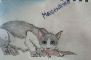 Mousewhisker by zyker325