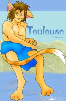 Toulouse for Yami-Loni by airlobster