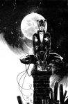 Catwoman commission low res by Spacefriend-KRUNK