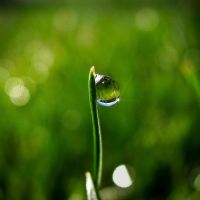 In the view of a drop . - 15 by T7-Productions