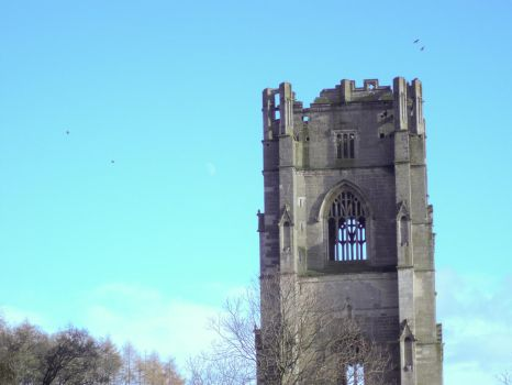 Fountains Abbey: crows by fallowbuck