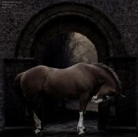 Emotional by RemorseHP