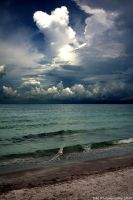 Florida 02 by dylanmeadows