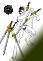 canon the paladin by canon15