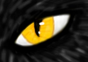 Eye by icepenguin26