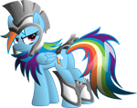 Rainbow Dash The Warrior by RatchetHuN