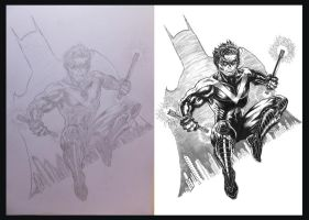 Nightwing WIP 2012 by barfast