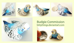 Budgie Commission by Bittythings