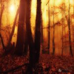 Funeral of lights by ildiko-neer