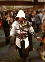 Assassins Creed Cosplay by seijinsuru