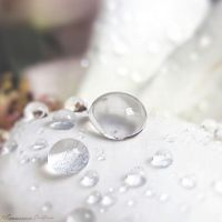 Drops by FrancescaDelfino