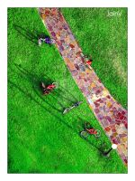 Bicycles from above by th3rdeye