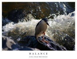 Balance by cezars