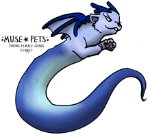 DemonSkylier - Cirrus by Muse-Pets