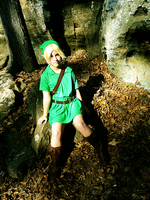 TLoZ- Into the Woods by pikachusweetie