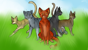 Warrior Cats REDRAW by Bullteruier