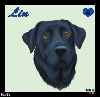 Mi dog LIN by ViolePandora