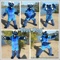 Blue Dog the GSD by TomorrowsBadSeeds