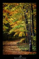 ...fall4... by canismaioris