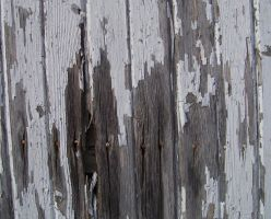Texture Barn Wood by gdolapp