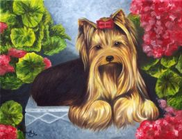 Jason and the Geraniums by HOULY1970