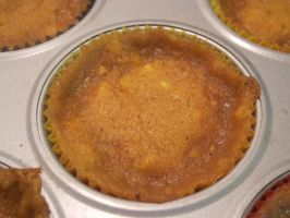 Gluten/Dairy-Free Peach-Mango Tarts 2 by Windthin