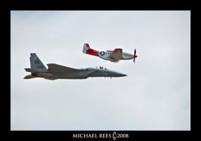 P-51D Mustang Heritage Flight by Luv2suspendyou