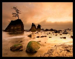 Oregon Coast 5 by austinboothphoto