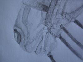 Horse Muzzle-pencil drawing by folipoo