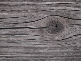 Wood Texture 11 by Limited-Vision-Stock