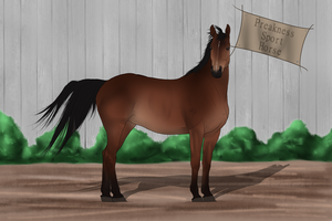 PSH Import 034 by RvS-RiverineStables