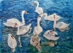 Swans 3 by cristineny