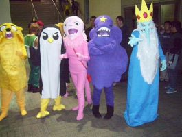 Adventure Time costumes by PaladinCecil